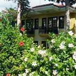 club_hotel_phaselis_rose_11
